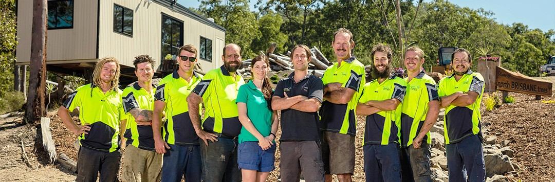 north brisbane trees team